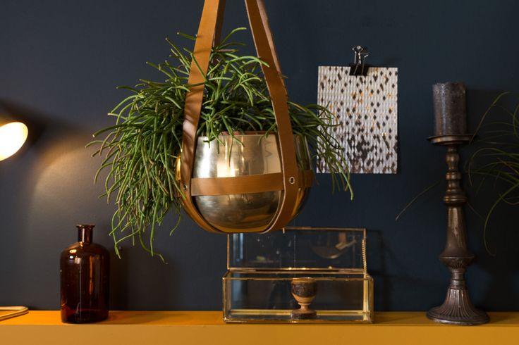 Best 25 Indoor Hanging Planters Ideas On Pinterest
