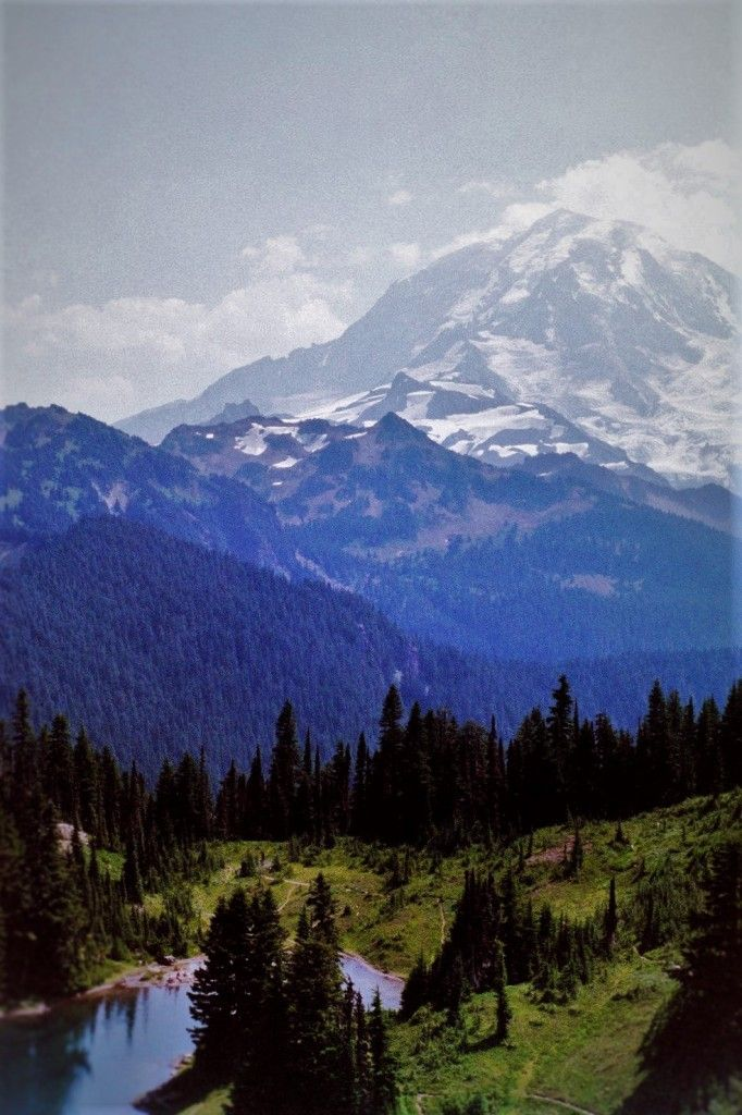 Best hiking in Mount Rainier National Park: beautiful and kid friendly hikes