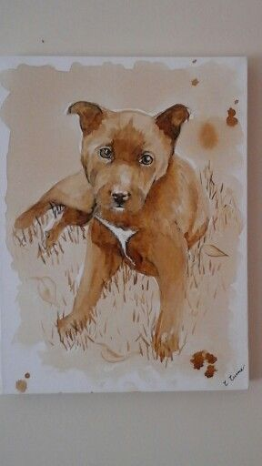Kelpie painted with coffee
