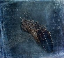Flocking Feathers by Randi Grace Nilsberg