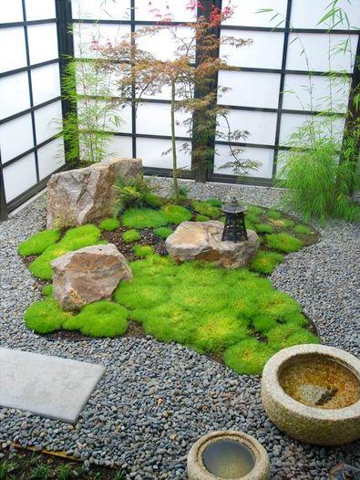 Japanese garden                                                                                                                                                                                 Plus