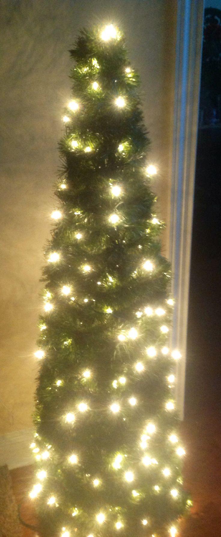 Christmas Tree To Plant