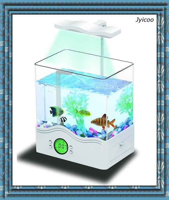 1000 ideas about cheap fish tanks on pinterest for Cheap fish tanks for sale
