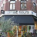 devanture devanturebulent  Oh les fleurs Lille Nord fleuriste devanture vitrine jeu de mot humour photo fleur