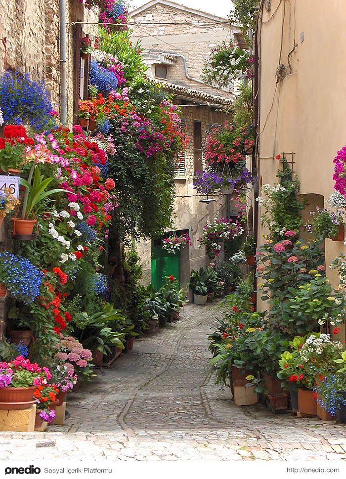 Ağaçlar ve Çiçekler ile Büyüleyici Bir Hale Gelen Çok Romantik 15 Sokak