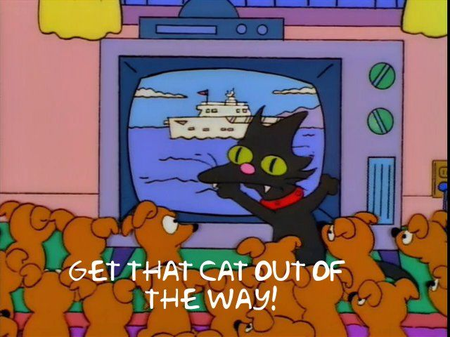 Get that cat out of the way!