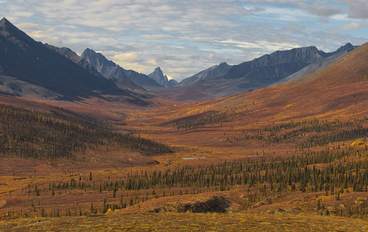 2017 Fly-In Fall Colour Workshop Deep into Tombstone Territorial Park