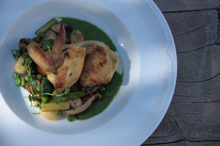 Coqelet with gnocchi, Ramsons pesto, peas, asparagus, green onion and mushroom mix