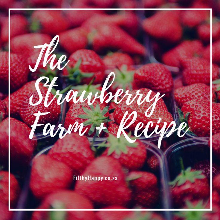 the-strawberry-farm