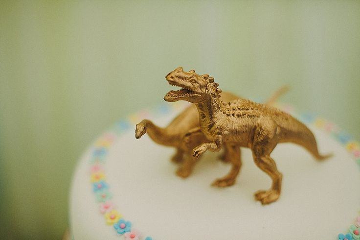 Dinosaur cake toppers | Photography by http://sdphotography.co.uk/