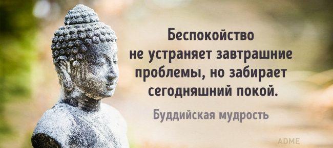 http://www.adme.ru/cards/7-mudryh-otkrytok-nedeli-1283965/