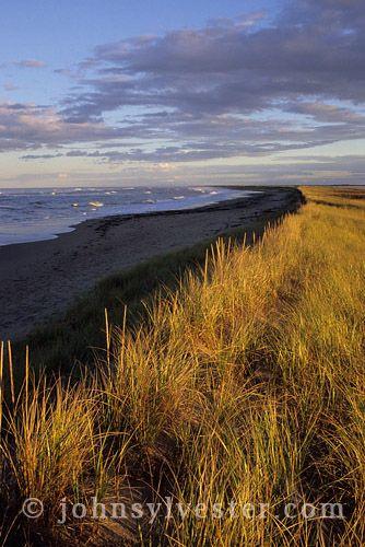 beach;dunes;Kellys Beach;Kouchibouguac National Park;New Brunswick;Canada;landscape;scenic;evening;nature;environment;Gulf of St. Lawrence;coast;coastal;marram grass