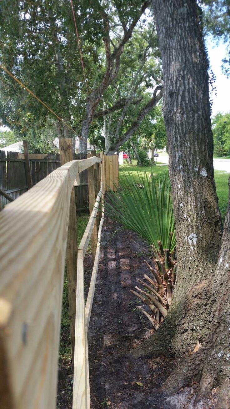 Pin By David Nawrocki On Fence Pics Work In Progress Plants Garden Tree