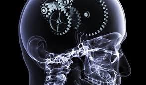 Intarirea memoriei si cresterea performantelor intelectuale