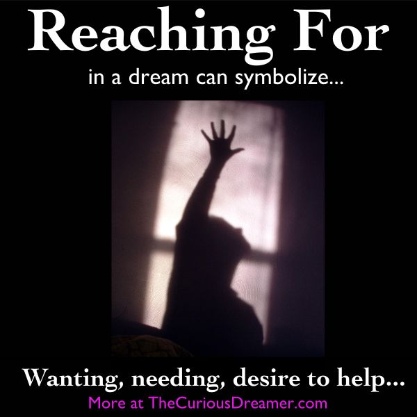 165 Best Sonhos Images On Pinterest Dreams Dream Meanings And