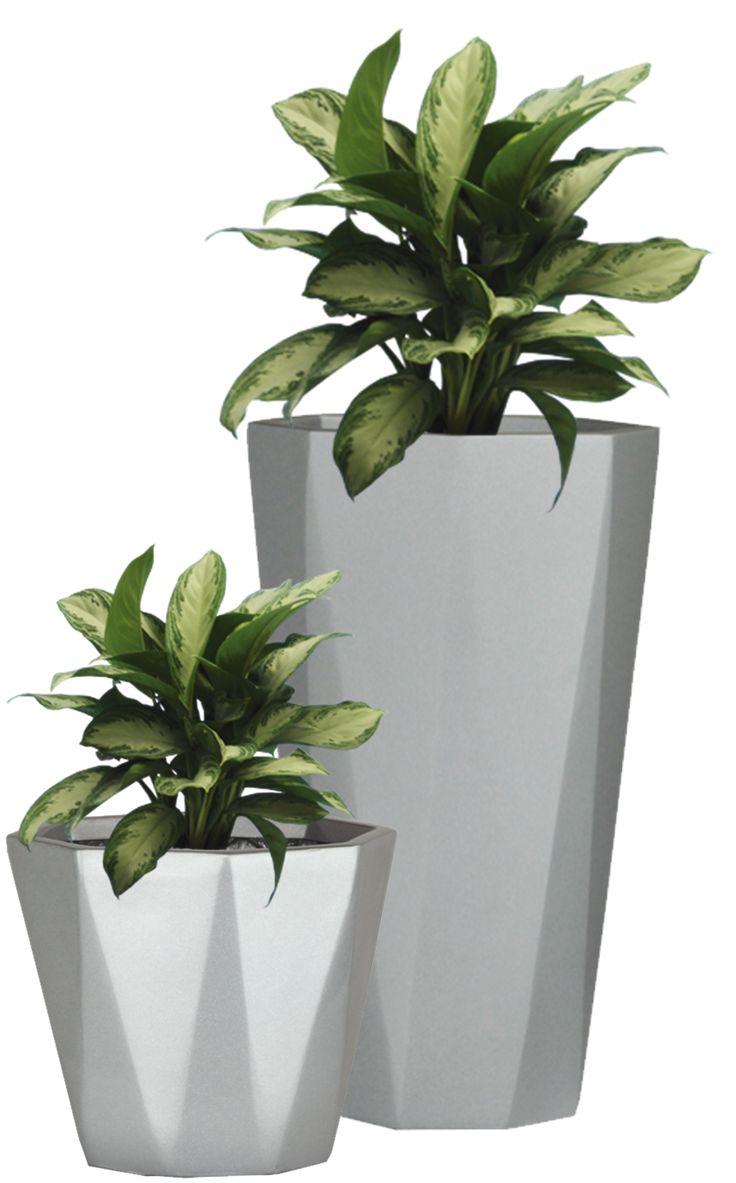 Plant Png Images Google Search Kleine Blumentopfe Kubelpflanzen Moderne Blumenarrangements