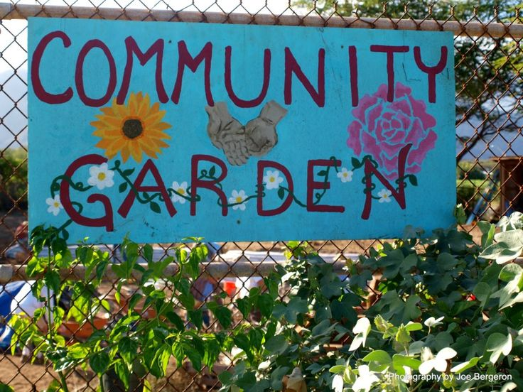 gardening recreation to the mind All gardening services london needs in  pick the gardening services trusted by many in  you are now a proud homeowner with a cosy outdoor recreation area.