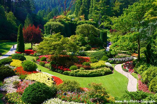 Butchart Gardens Vancouver Places I Want To See Pinterest