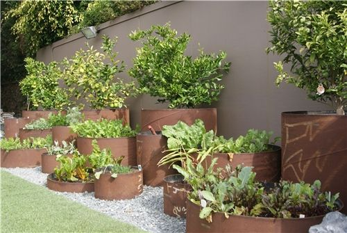 A raised bed garden constructed of industrial steel pipes. Z Freedman Landscape Design in Venice, CA