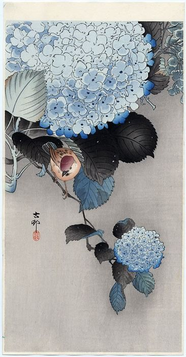 'Sparrow on Hortensia' woodblock print by Ohara Koson