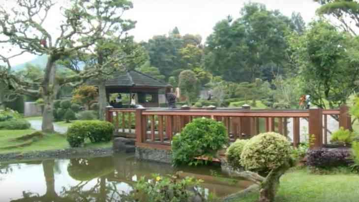 Taman alam terbuka bernuansa negerai tirai Bambu yang indah menjadi dalah satu tempat liburan di alam terbuka bernuansa sejuk di kawasan daerah Puncak Bogor.