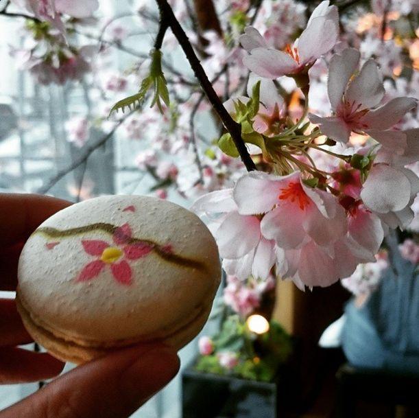 So pretty! A cherry blossom macaron at London's Sake no Hana. Sake no Hana are celebrating the Japanese Cherry Blossom season with a limited edition Sakura menu!