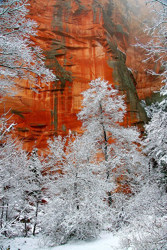 Oak Creek Canyon in the snow