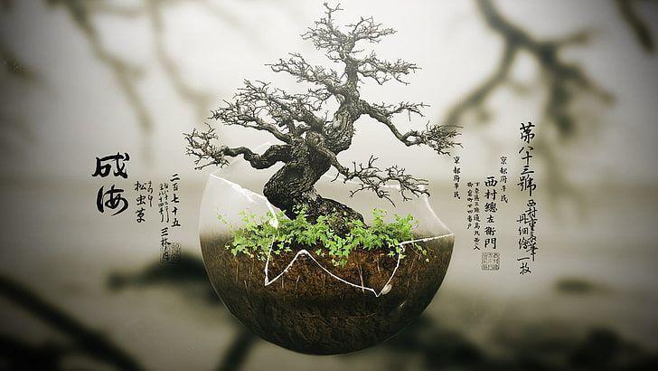Green Bonsai Tree Trees Digital Art Plants Nature Growth Hd Wallpaper Art Art Bonsai Digital Green Growth Nature Hd Wallpaper Bonsai Tree Bonsai