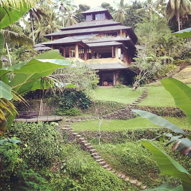 @rikleeillustration Ubud, Bali.