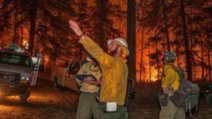 Manusia Menjadi Penyebab Utama Kebakaran Hutan di AS