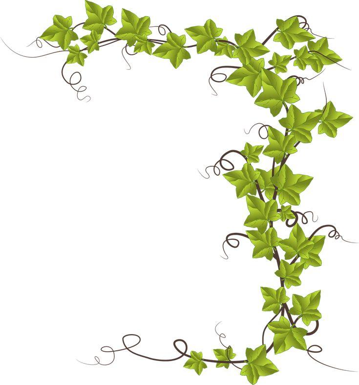 68 best ivy images on pinterest ivy hedera helix and ivy plants rh pinterest co uk Brick Wall Artwork Cartoon Brick Wall