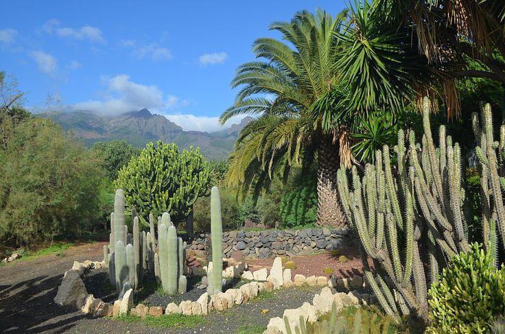 Gardens, Rural Hotel Salamanca, Guimar | by tenerife holidays