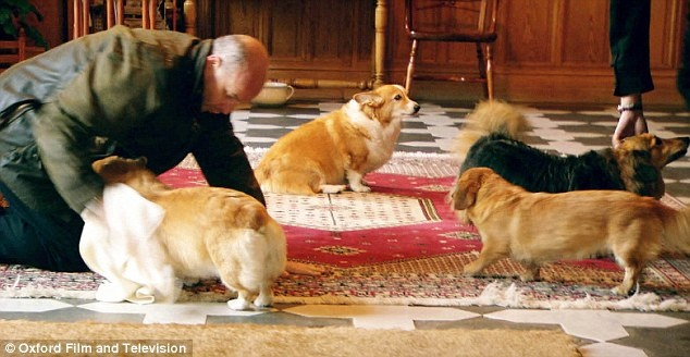 Royal hounds: Staff dry the the Queen's corgis after a walk at Balmoral