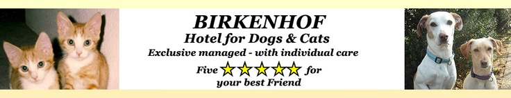 Animal boarding house Birkenhof Hotel for dogs and cats in Weiterstadt at Darmstadt
