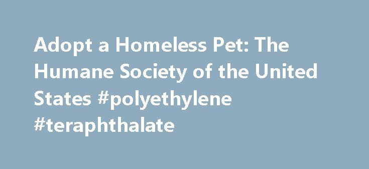 Adopt a Homeless Pet: The Humane Society of the United States #polyethylene #teraphthalate http://pet.remmont.com/adopt-a-homeless-pet-the-humane-society-of-the-united-states-polyethylene-teraphthalate/  ​ Thinking about getting a pet? Millions of companion animals in shelters across America are just waiting for a special home like yours. Navigating the adoption process isn't as hard as you think. We can help you find the perfect pet and discover how amazing adopting a pet can be. Adoption…