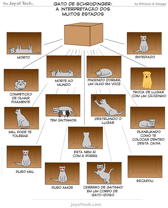 Crazyseawolf's Blog: O gato de Schrödinger e suas muitas interpretações...
