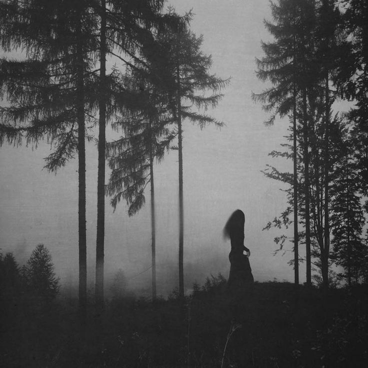 Shady Photography by Mirjana Grasser Through her shady photographs Mirjana Grasser merges us in a dark dreamworld. She mainly captures silhouettes of women wandering in foggy and mysterious forests or focuses on the delicate beauty of flowers. Find out more below. #xemtvhay