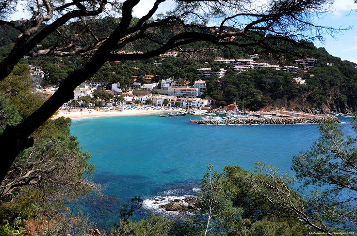 Costa Brava Day 4 - Llafranc