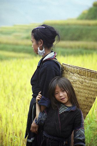 H'Mong Girls farming in the rice field of Vietnam