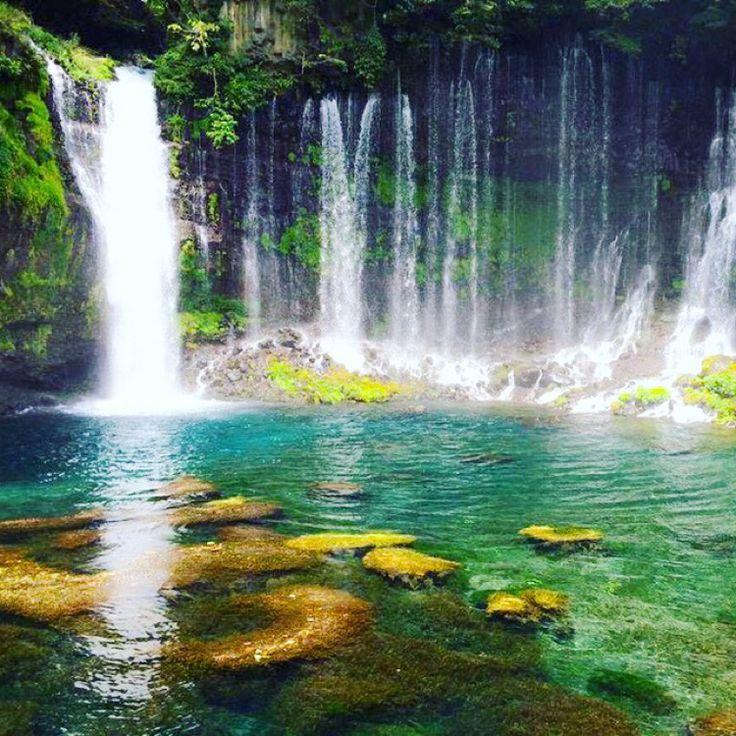 YUKARIさんの投稿/白糸の滝 | ことりっぷ