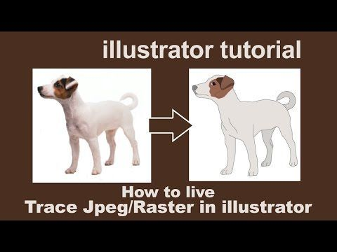 Illustrator Tutorials - live trace by converting JPEG/Raster to Vector - YouTube