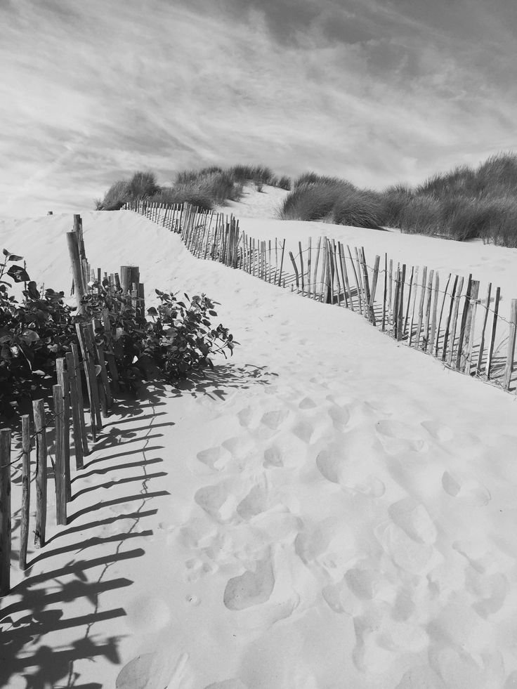 Formby National Trust Beach the sand dunes   Fashionmumof40 on Instagram