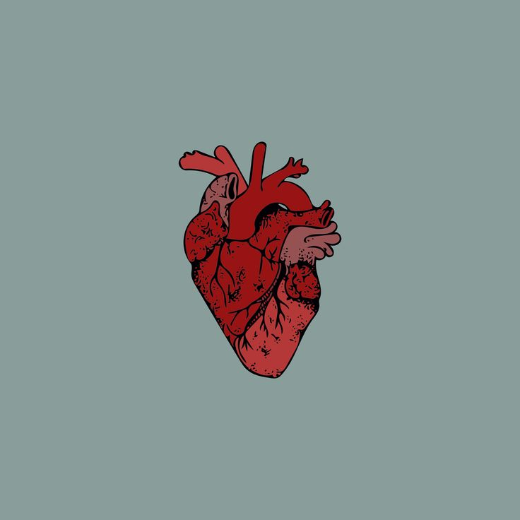 Heart of My Own Heart