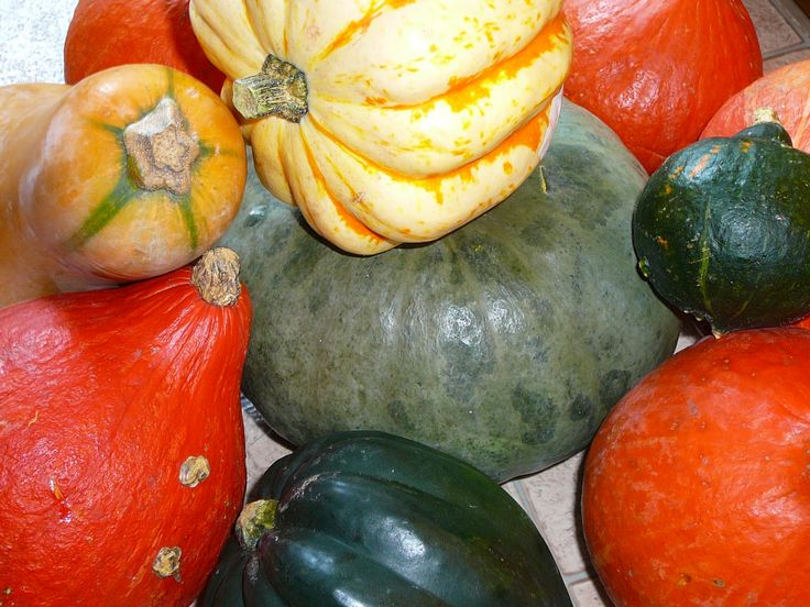 Alakul a gyűjtemény... #autumn #osz #hokkaido #pumpkin #sutotok #orange #grey #green