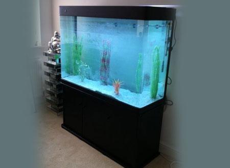 Ft600 Plasma Aquarium Click To View Bespoke Designer