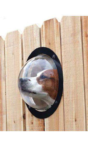 Pet Fence Window