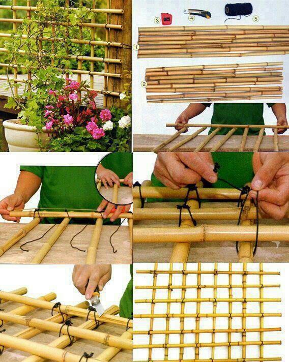 Para esta idea requerirás bambú, algo con qué atarlo (cáñamo, hilo de pescar, cuerda, lazo, lo que + se adecúe a tu diseño) y una tijera con filo.  Corta el bambú del tamaño adecuado para el área en donde tienes tus plantas trepadoras. Coloca sobre una s