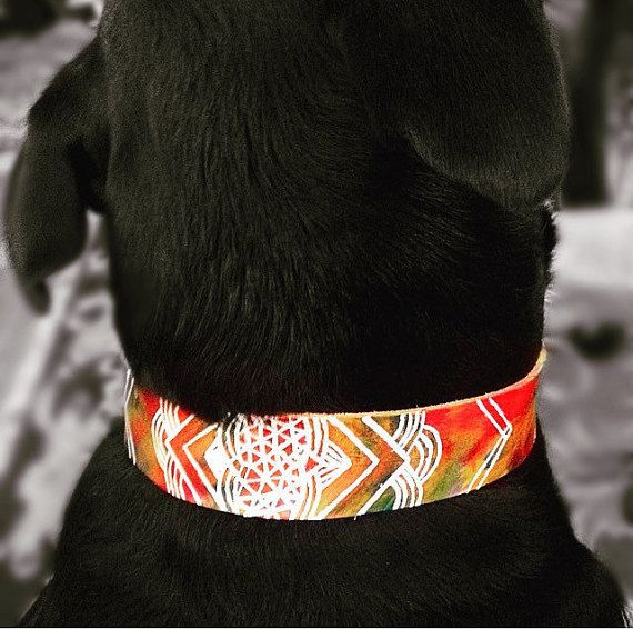 Leather Dog Collar Bohemian Dog Collar by TangerinePuppy on Etsy