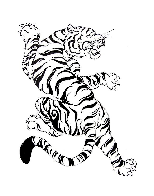 Adult Coloring Page South Korea Korean Art White Tiger