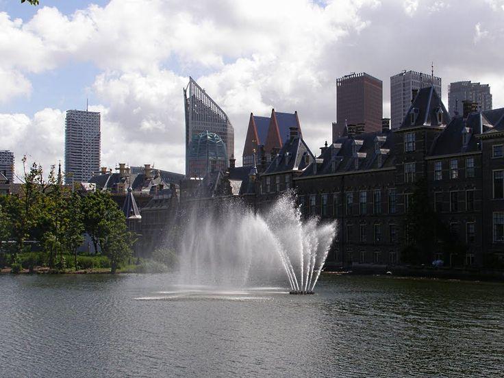 De Hofvijver is een water in het centrum van Den Haag. Het ligt in het oosten aan de Korte Vijverberg, in het zuiden aan het Binnenhof en het Mauritshuis, in het westen aan het Buitenhof en in het noorden aan de Lange Vijverberg. Er ligt een met planten en bomen begroeid eilandje in dat geen naam heeft.